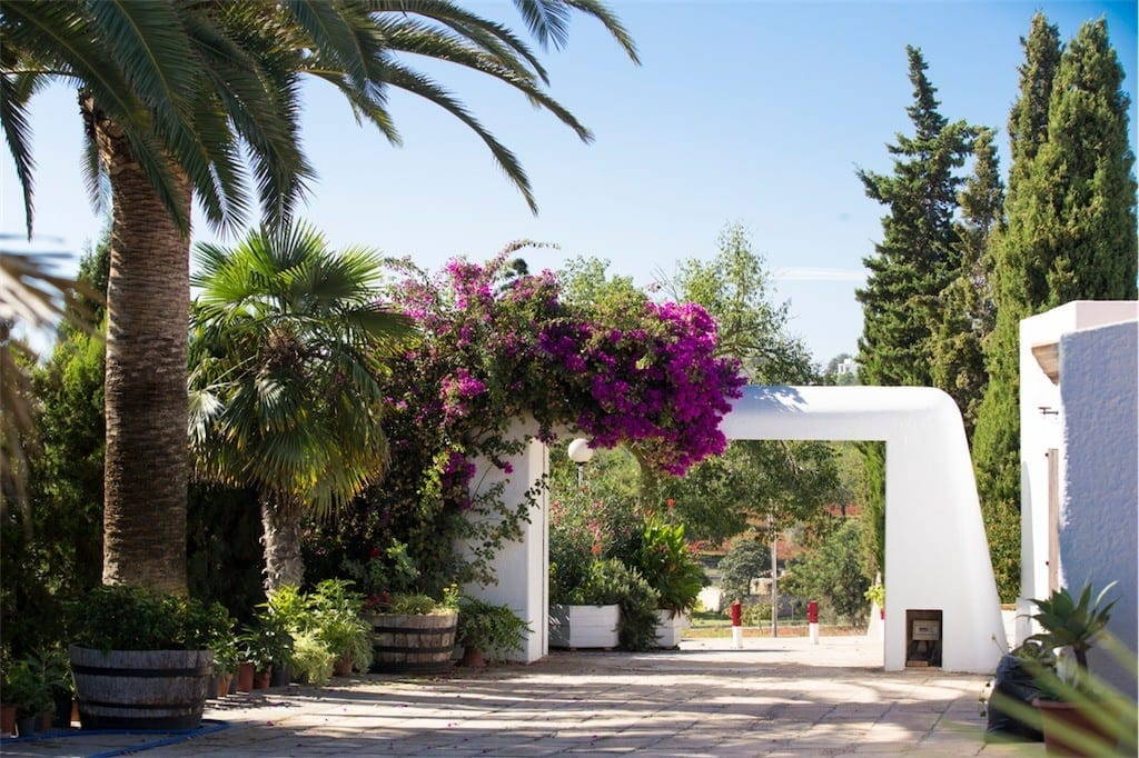 Entrance gateway with Bougainvilea