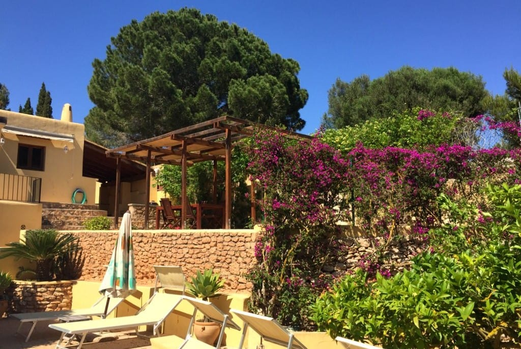 Terraces and flowers at Los Olivos