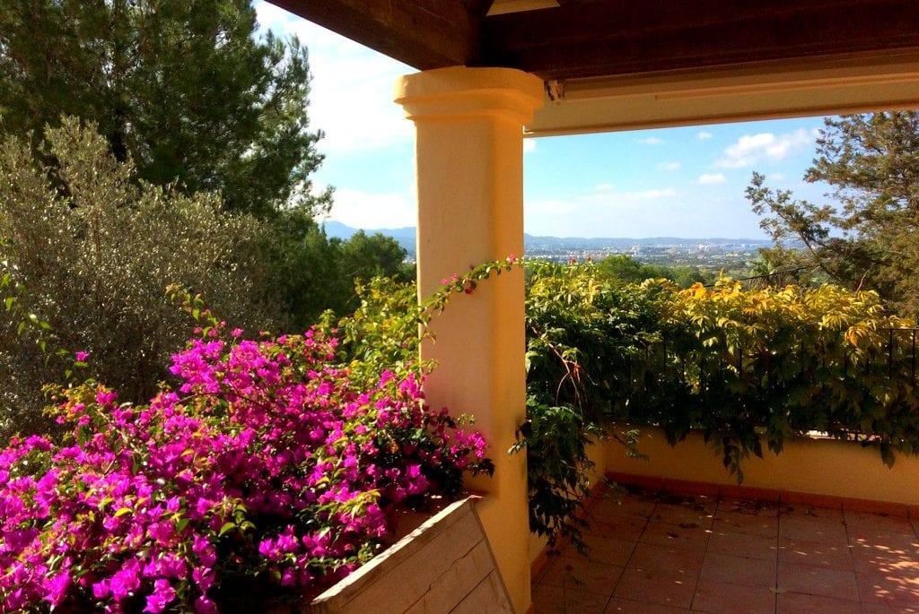 Mediterranean flowers and shrubs