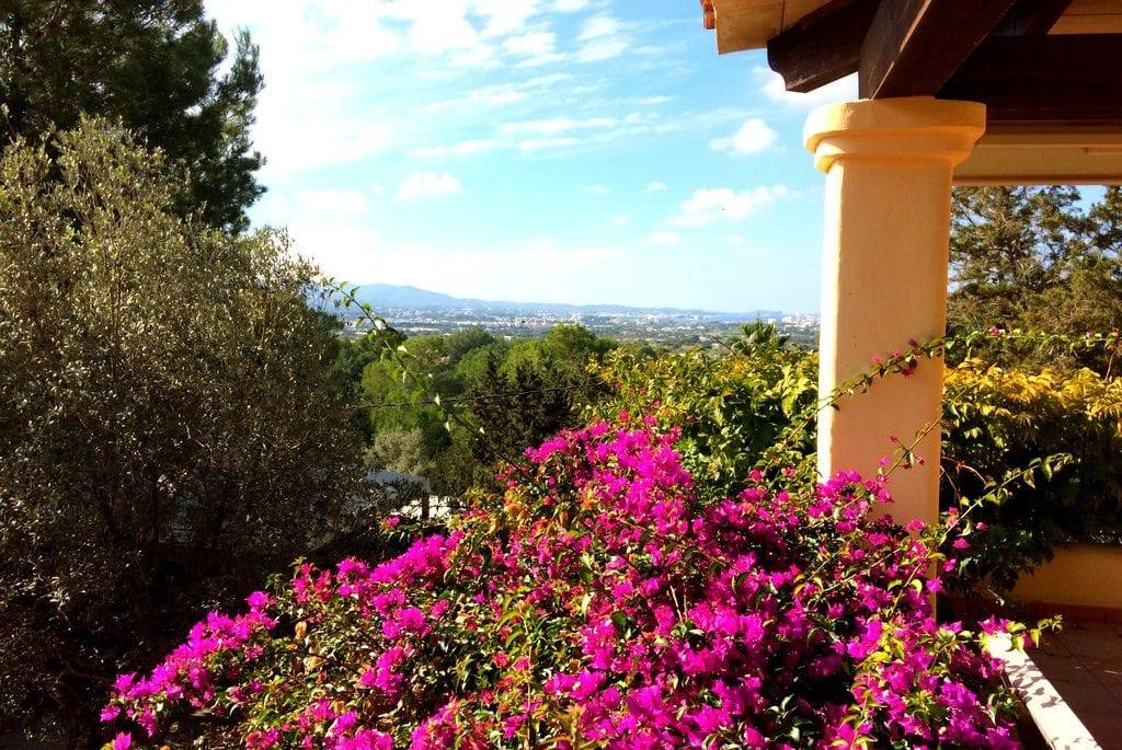 Beautiful flowers and views across to San Antonio