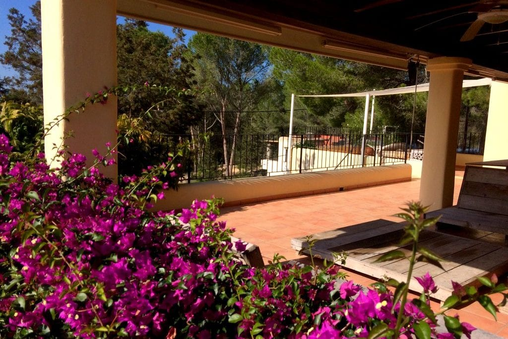 Covered terrace with bougainvillea