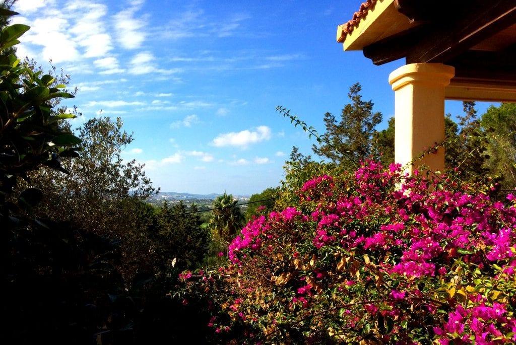 great value ibiza villas 2017
