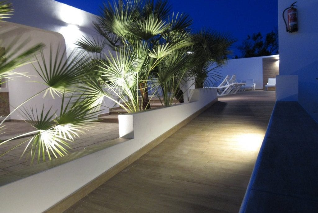 Path with lights and palms at Pep Luis