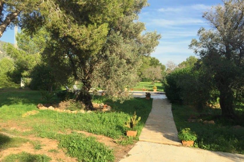 Villa Tinto - Great value villa rental in Ibiza Town ...