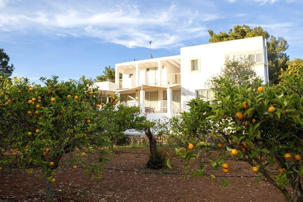 Side aspect of villa overlooking orchard