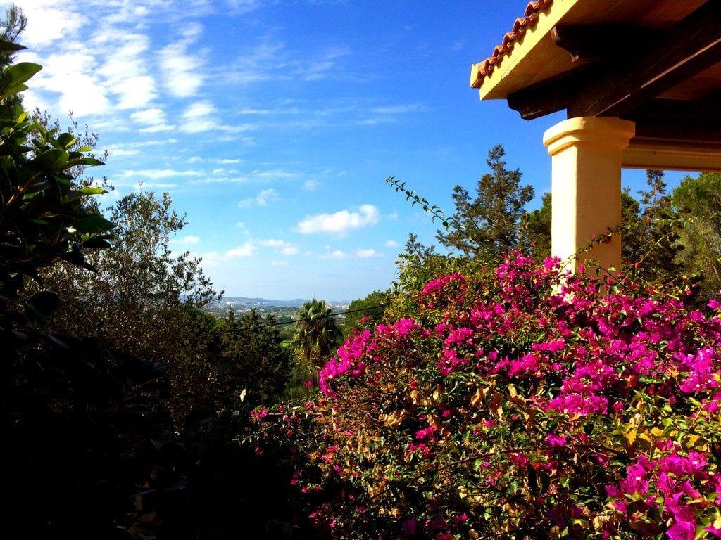 This way to great value ibiza villas 2017