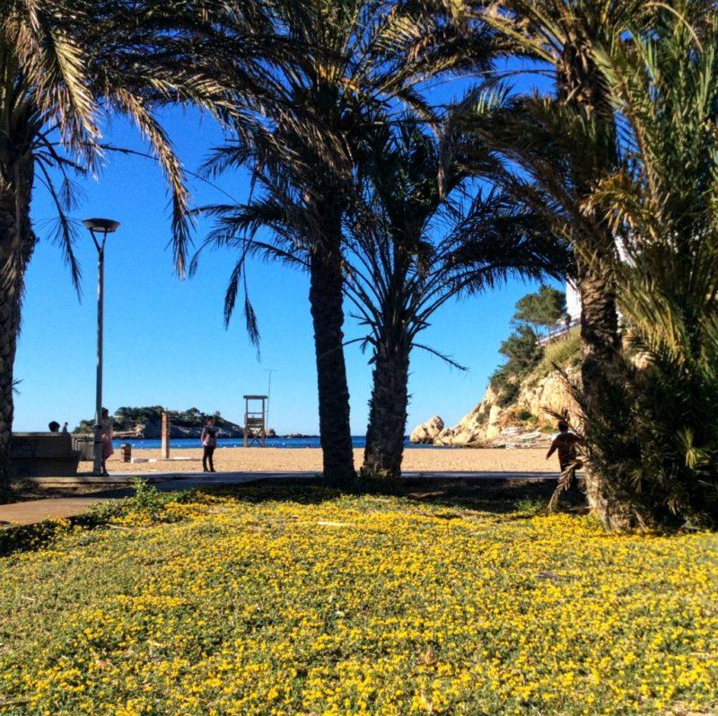 Ibiza in April beautiful beaches